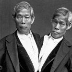 16 Fatos curiosos e informações extraordinárias sobre os gêmeos