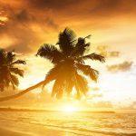 18 Coisas que você não sabia sobre o verão