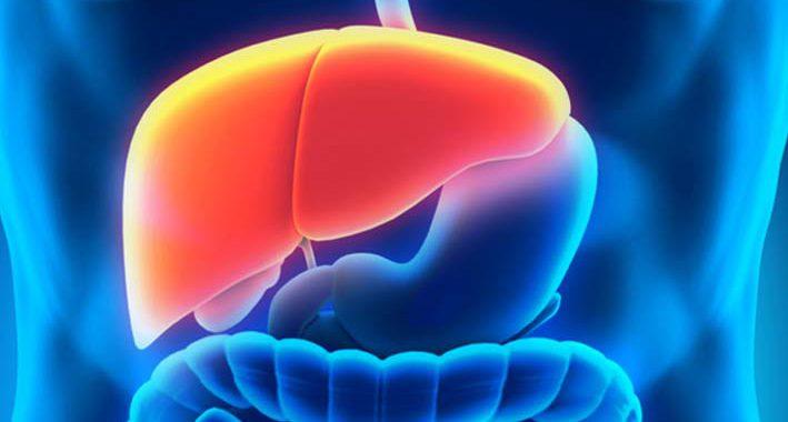 15 Fatos e informações curiosas sobre a Hepatite